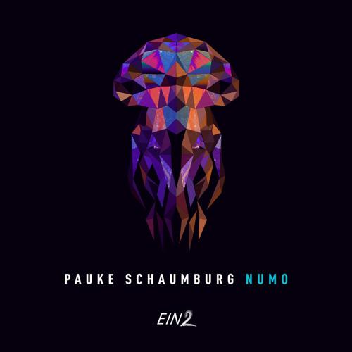 Pauke Schaumburg - Erus