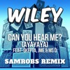 Wiley - Can You Hear Me (SamRobs Remix)