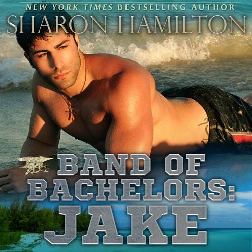 Jake Audio Snippet 1 01