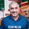 EP 455 Cesar Millan: Train Confidence & Become the Leader of the Pack