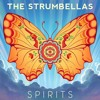 Spirits (Strumbellas)