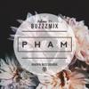 Buzzzmix Vol. 39 -- Pham
