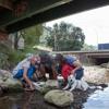 Korokoro Stream, sensitive urban design and ecological restoration