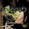 Delicious Delay - Di Dekatmu ( Acoustic )CRAZYRASTA Cover
