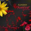 Sunday Suspense Khagam Part 1 By Satyajit Ray Mp3