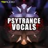 Psytrance Vocals mp3