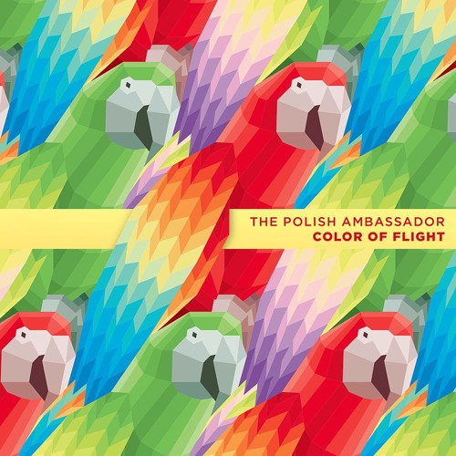 The Polish Ambassador - Color Of Flight