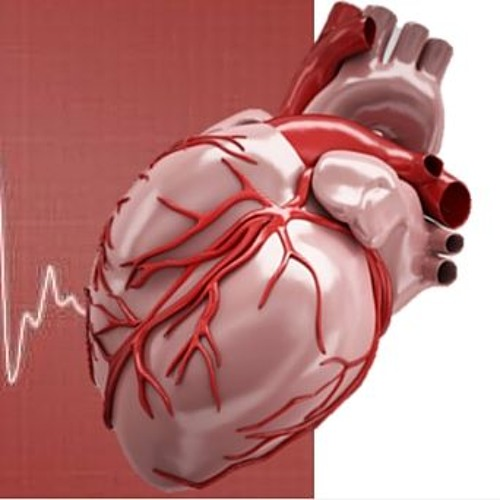 About Your Health 4 - Cardiovascular
