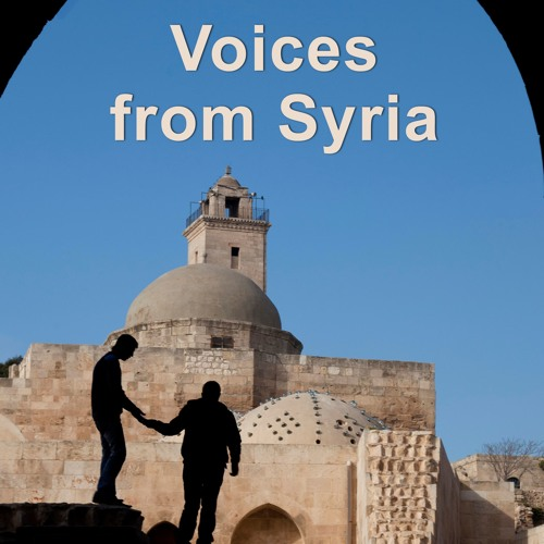 Peering into Syria - with Mark Taliano