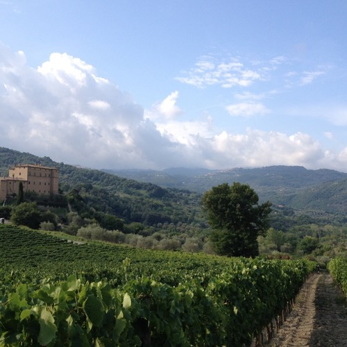 Field Report: Castello di Potentino