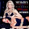 Shakira Feat. Rihanna - Can't Remember To Forget You (Murilo Allonso DUBMIX)