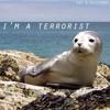 Gee & Nocturne - I'm A Terrorist
