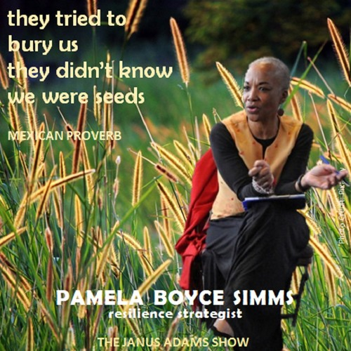 """They Tried to Bury Us. They Didn't Know We Were Seeds"": Pamela Boyce Simms (FULL SHOW)"