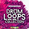 Drum Loops Collection from HY2ROGEN (1452 samples)