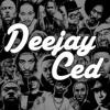 DJ C.e.D - Old School Hip Hop (Live Mix)