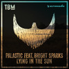 Palastic feat. Bright Sparks - Lying In The Sun [OUT NOW]