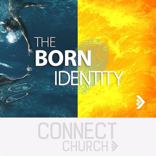 The Born Identity - Born Again (Howard Wylie)