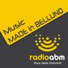 """Music made in Belluno - Intervista ai """"Delirium X Tremens"""""""