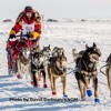 Episode 15: Mitch Seavey Wins the Iditarod In Record-Breaking Fashion