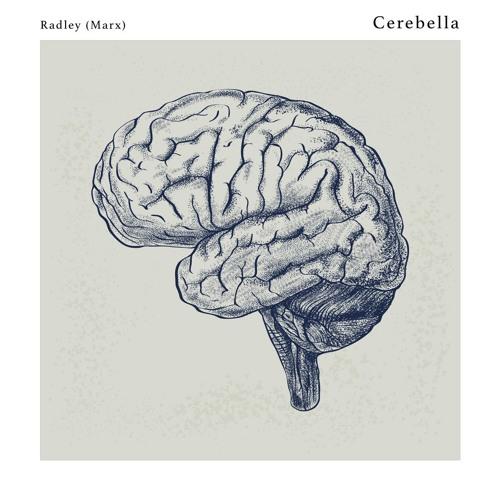 Cerebella