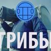 Download Грибы - Тает Лёд Mp3