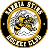 Sting In A Minute Vs Windsor Spitfires Mar 15 4 - 2 W