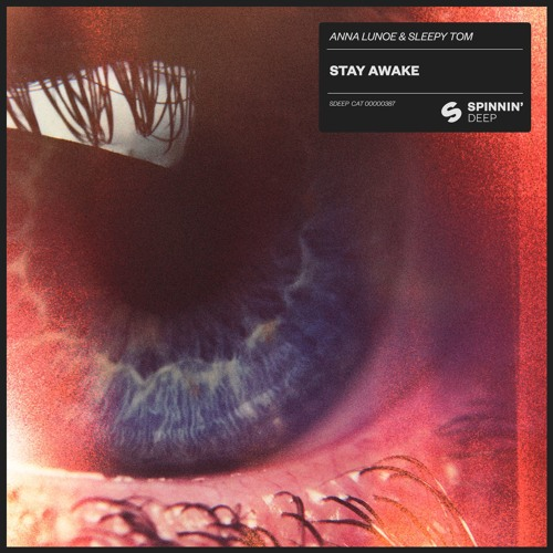 Anna Lunoe & Sleepy Tom - Stay Awake