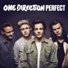 One Direction - Perfect Acoustic Cover