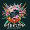 Bassnectar & ATLiens - Interlock
