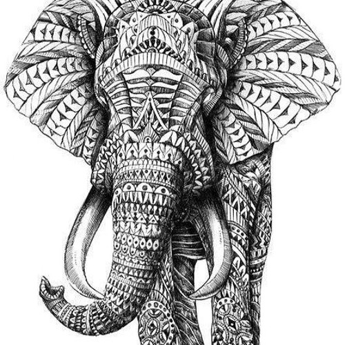 Elephants Brain Live @ Tapijn Kazerne