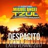 Despacito - Luis Fonsi Cover