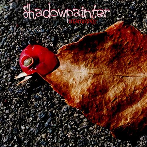 23 years shadowpainter