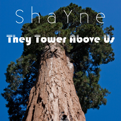 They Tower Above Us (HD 96KHz/24-bit)