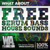 FREE Serum Bass House Sounds | 20 xFer Serum Patches + 50 Drums