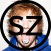 Ed Sheeran - Shape Of You (Seb Zillner Cover)