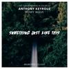 Anthony Keyrouz & Romy Wave - Something Just Like This