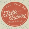 Free Indeed: The Christian life/life of a believer is NOT a repetitive cycle of rising and falling.