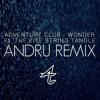 Adventure Club - Wonder (ANDRU Remix)