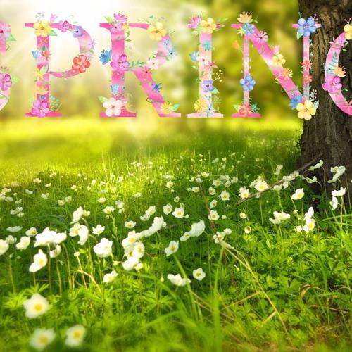 Spring. Soprano, Alto, Tenor Recorders.