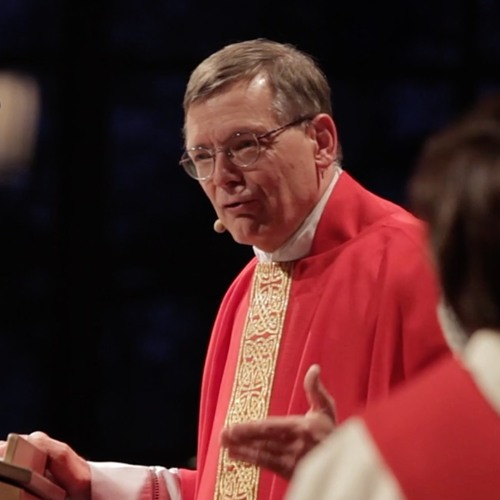Anglican Identity: Encountering the One Who Lives and Breathes by Canon Stephen Gauthier