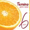 Temino  (Joris Rossi • 2017)