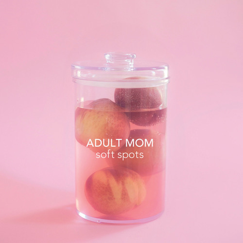 Adult Mom - Drive Me Home