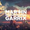 Avicii & Martin Garrix Ft. Sean Paul - Never Let Me Go *FREE DL*