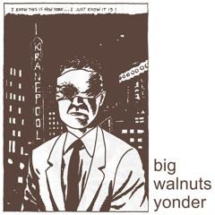 Big Walnuts Yonder - Sponge Bath