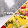 Til Sitter | wenn die Musik deinen Herzschlag kontrolliert! | Goodbye Winter Mixtape 2017