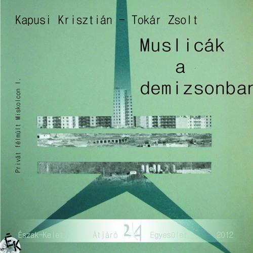 Privát Félmúlt Miskolcon_20170316