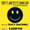 KarNeVor's I Loved You Remix feat; Tracy Cracknell's Vocals