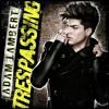 Adam Lambert - Runnin (lyrics) (320  Kbps)