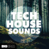 Tech House Sounds [Drums, Massive / Sylenth1 Presets, Kits & Melodies] OUT NOW On Beatport!