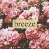 Breeze (w/ Curfew)